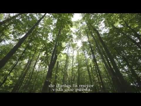 THE LAST PIG Official Trailer HD Con Subtitulos