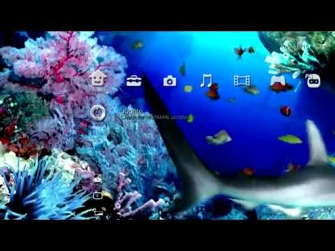 multiMAN 02.05.03+ Experimental Motion/Movie Background Support - PS3 Homebrew