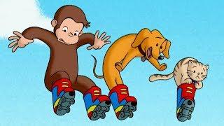 Jorge el Curioso | UN MONO EN PATINES | Dibujos animados para niños | WildBrain