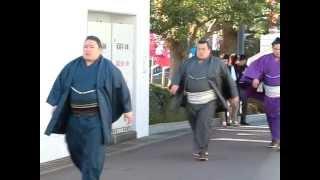 大相撲一月場所初日。 境川トップ3の場所入り。 つか、何でいつも佐田の...