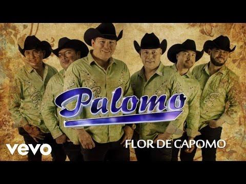 Palomo - Flor De Capomo (Lyric Video)