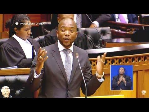 DA Mmusi Maimane Congratulate Pres Cyril Ramaphosa