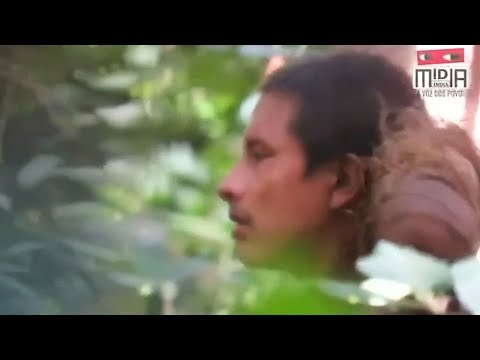 Rare, uncontacted Amazon tribe caught on tape in Brazil