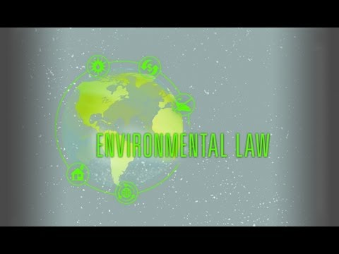 Environmental Law at the Crossroads
