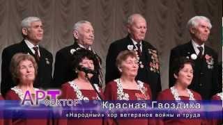 хор ветеранов войны и труда «Красная Гвоздика»