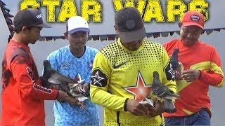 PERISAI LANGSUNG JUARA DI SEMI FINAL-Star Wars Merpati Kolong KR NANGKA-EmpatTiangMania