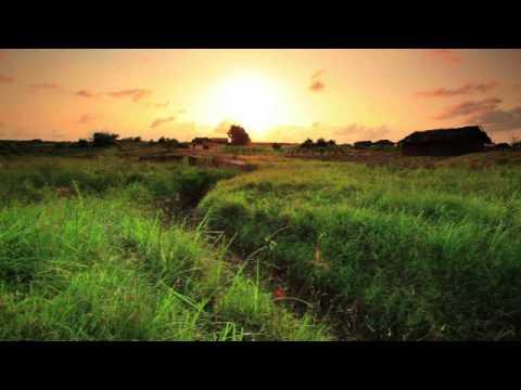 Pristine Africa