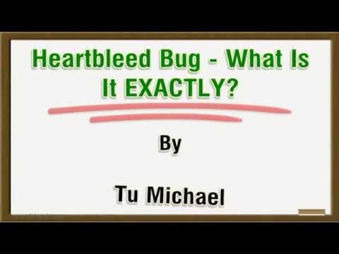 Heartbleed Bug -  What Is It EXACTLY?