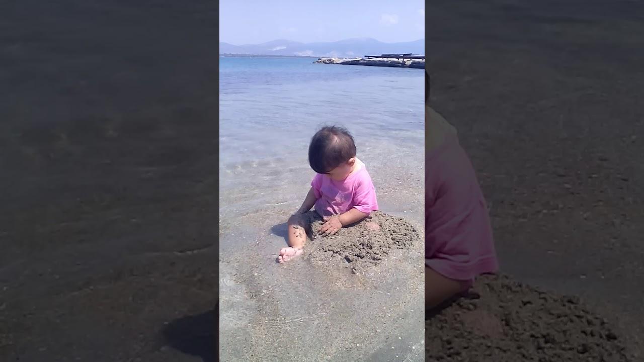 Komik bebek denizde