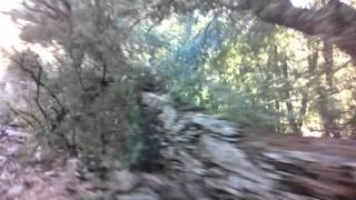 Ribera del río cabron,(Figueruela de Arriba)