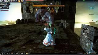 Vindictus: Muir - Staff Evie no damage