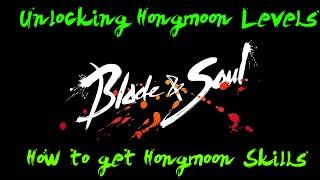 Blade & Soul : Unlocking Hongmoon Levels & Hongmoon Skills