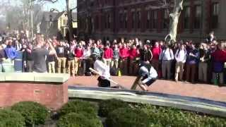2014 Chariot Races