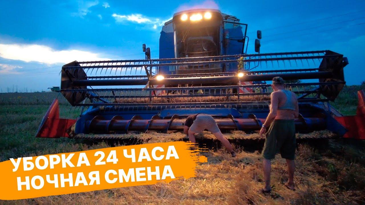 Уборка пшеницы круглосуточно. Все эксперименты: фунгициды, падалица, предшественники, урожайность.