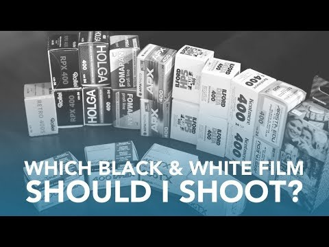An Ultimate Guide to Every B&W ISO 400 35mm Film on the Market