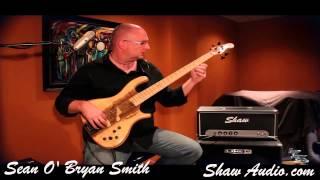 Shaw Audio 150 Watt All Tube Bass Amp
