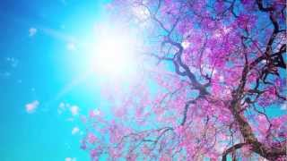 Snatam Kaur ~ Long Time Sun (Children