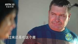 《地球村日记》 20200625 彼得大叔的美食vlog:俄罗斯苏伯汤|CCTV农业