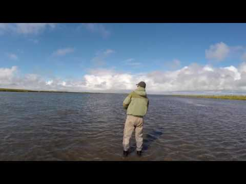 Silver Salmon Fishing in the Cinder River