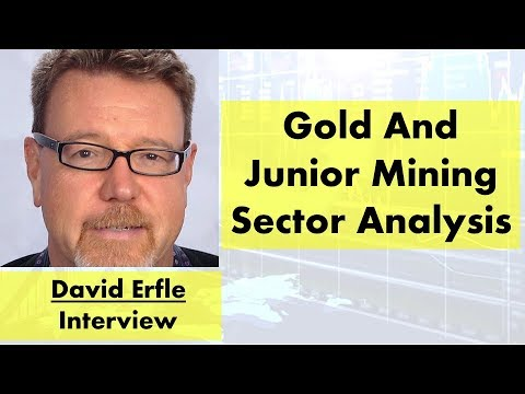 David Erfle | Gold And Junior Mining Sector Analysis