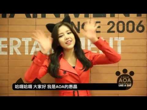 王牌女神AOA 最新韓語迷你2輯《LIKE A CAT》發售倒數 - 還有2天!惠晶篇