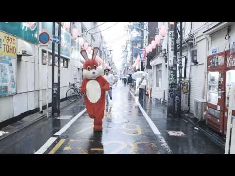 コンテンポラリーな生活 / ピンポンダッシュ【MUSIC VIDEO】