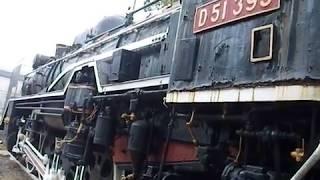 D51形蒸気機関車の静態保存は悲しげな有り様だ