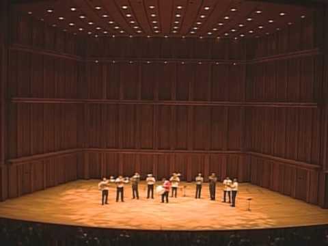 Fanfare Shukar - Nicoleta (Live in Japan)