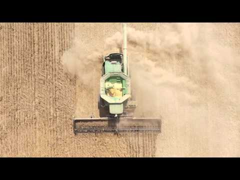 Ulen Farms Soybean Harvest 2015