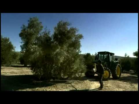 Our Daily Bread - trailer