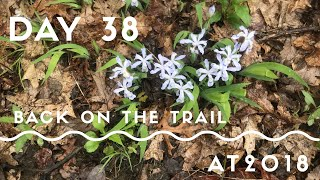 Appalachian Trail 2018 | Day 38: Leaving Hot Springs, Back on the Trail!