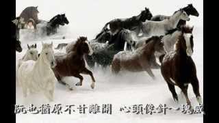 陳一郎 可愛的馬 一