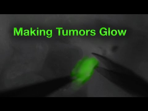 Advances in Cancer Surgery: Making Tumors Glow