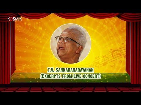 T.V. Sankaranarayanan (Excerpts From Live Concert)