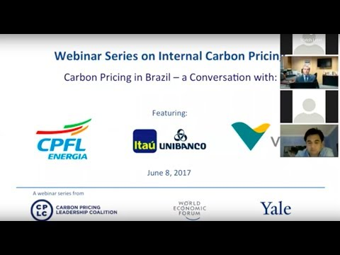 Carbon Pricing In Brazil: A conversation with CPFL, Itaú Unibanco and Vale