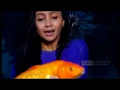 Download Film MNCTV Terbaru ikan emas Ajaib dan anak durhaka full
