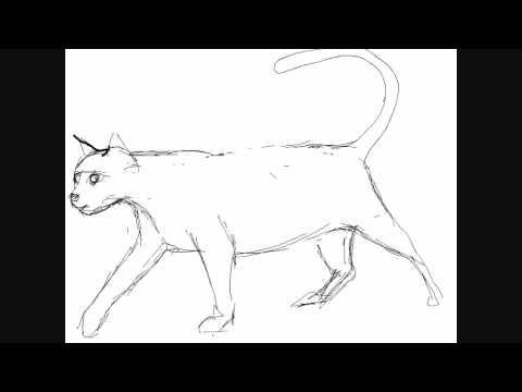 Dibujar gatos , Dibujos para Pintar