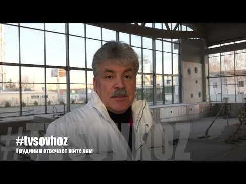 Грудинин ответил на вопросы жителей Совхоза имени Ленина (бассейн)