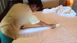 泰有教育:教你毛巾摺孔雀加超爛旁白