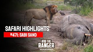 Idube Safari Highlights #471: 16 - 20 April 2017 (Latest Sightings) (4K Video)