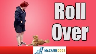 How To Teach Your Dog To Roll Over On Command
