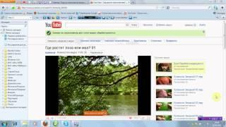S28 Наложение музыки на видеоролик. Озвучивание.avi