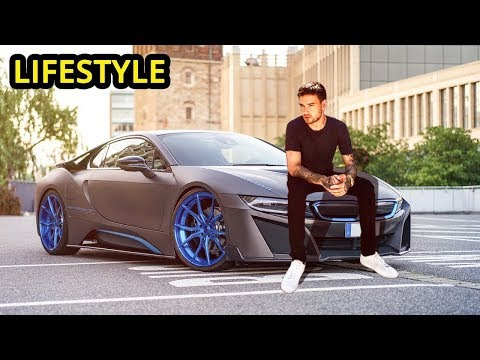 Liam Payne Lifestyle 2019   Why People Love One Direction Member?