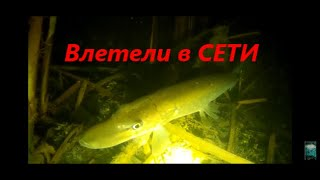 Самая Быстрая Подводная Охота Влетели в браконьерские сети