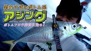 釣れすぎのボトム系アジング「ボトムフロウ釣法」に迫る!【エコギア】