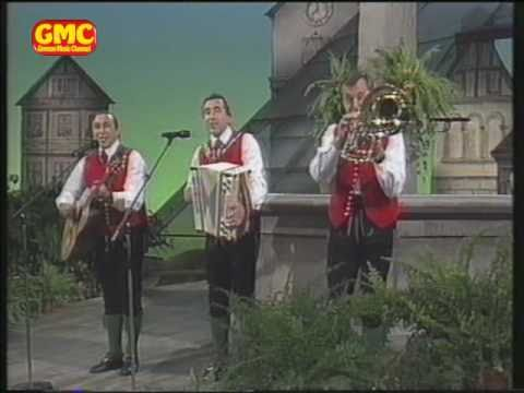 Stoakogler Trio  Steirermen san very good