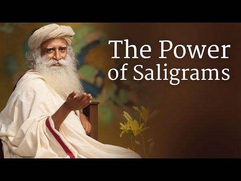 The Power of Saligrams