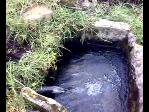 Manantial Agua Pura - YouTube