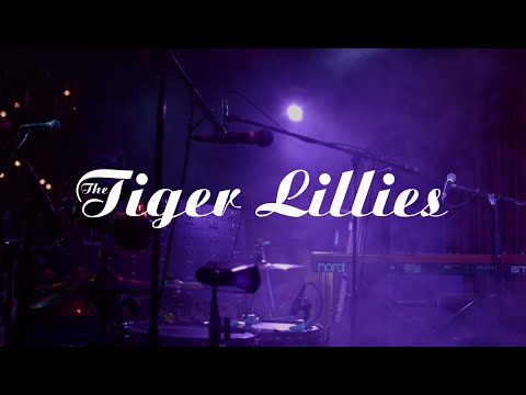 The Tiger Lillies: Current