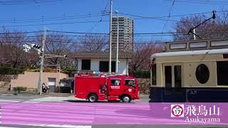 【2018.03.17】東京さくらトラム 沿線の桜情報